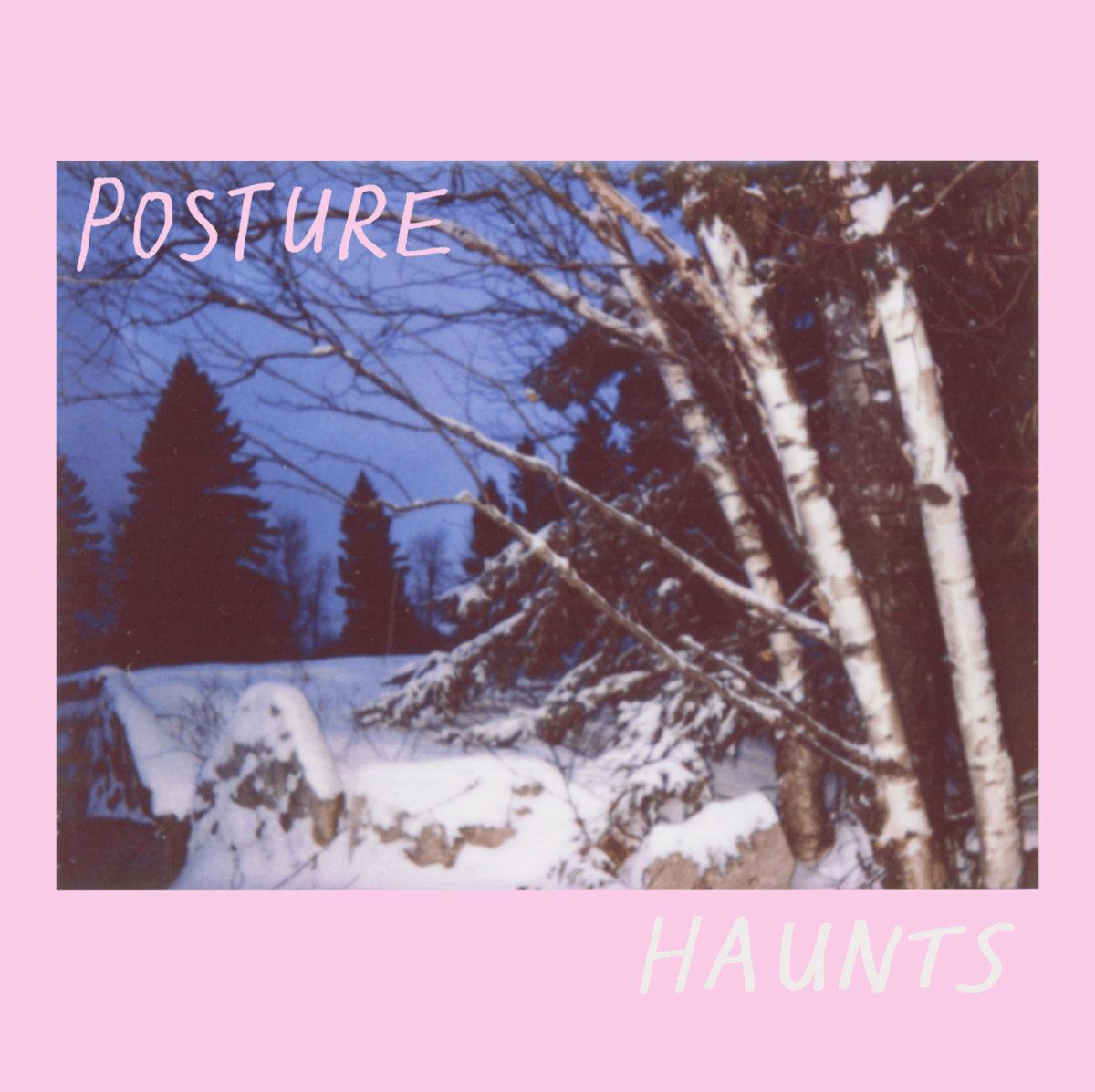 Posture - EXOSKELETONS cassette + Haunts vinyl