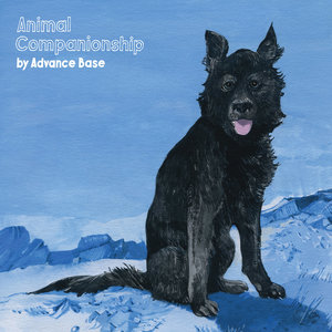 Advance Base - Animal Companionship LP