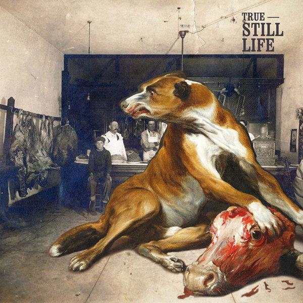 TRUE - Still Life
