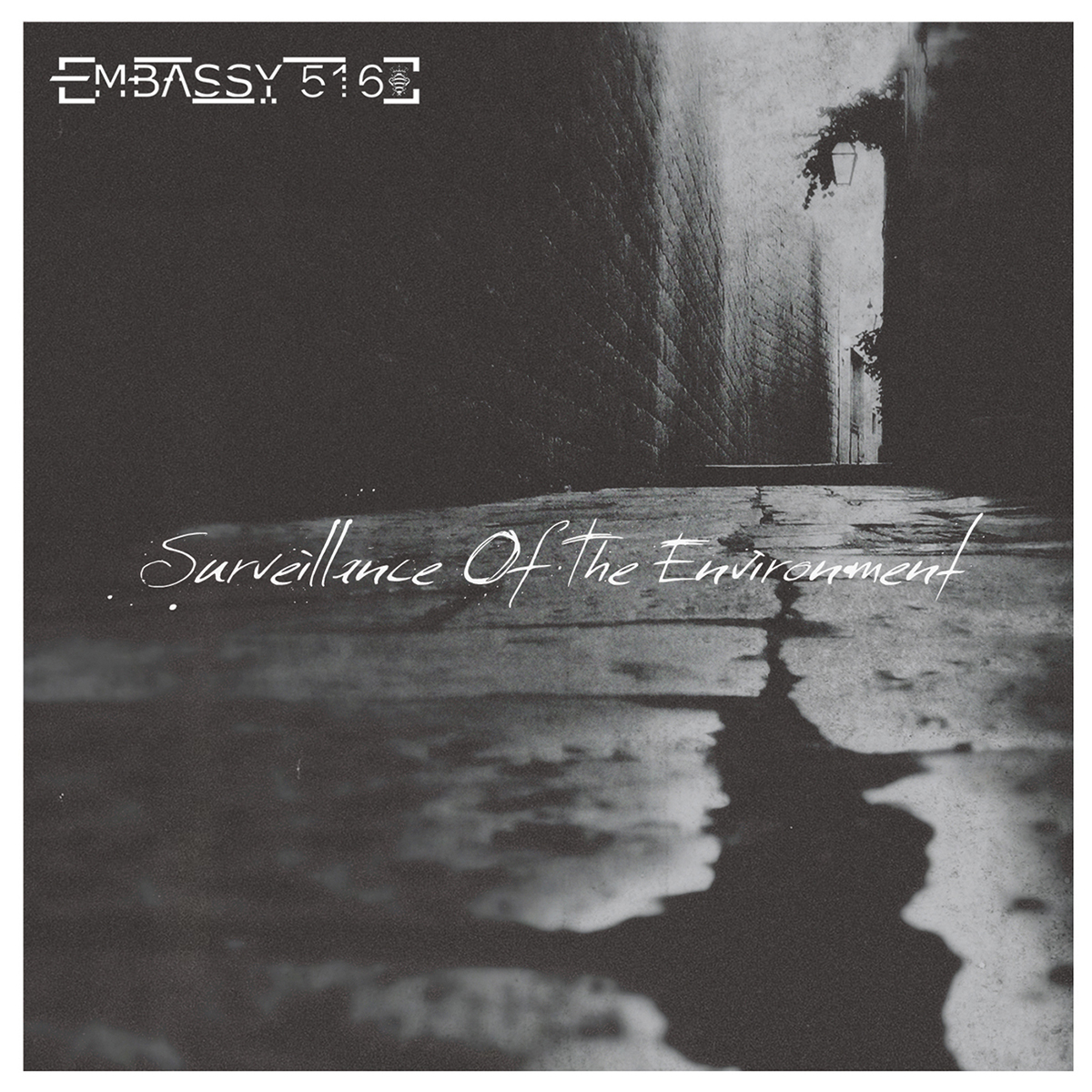 EMBASSY 516 - Surveillance of the Environment