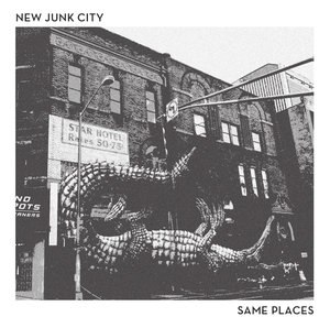 New Junk City - Same Places LP