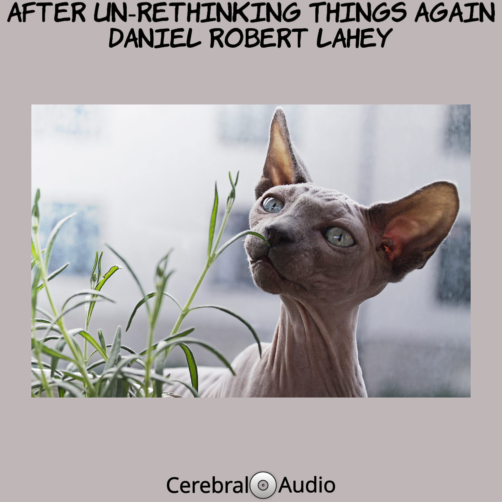 After Un-Rethinking Things Again