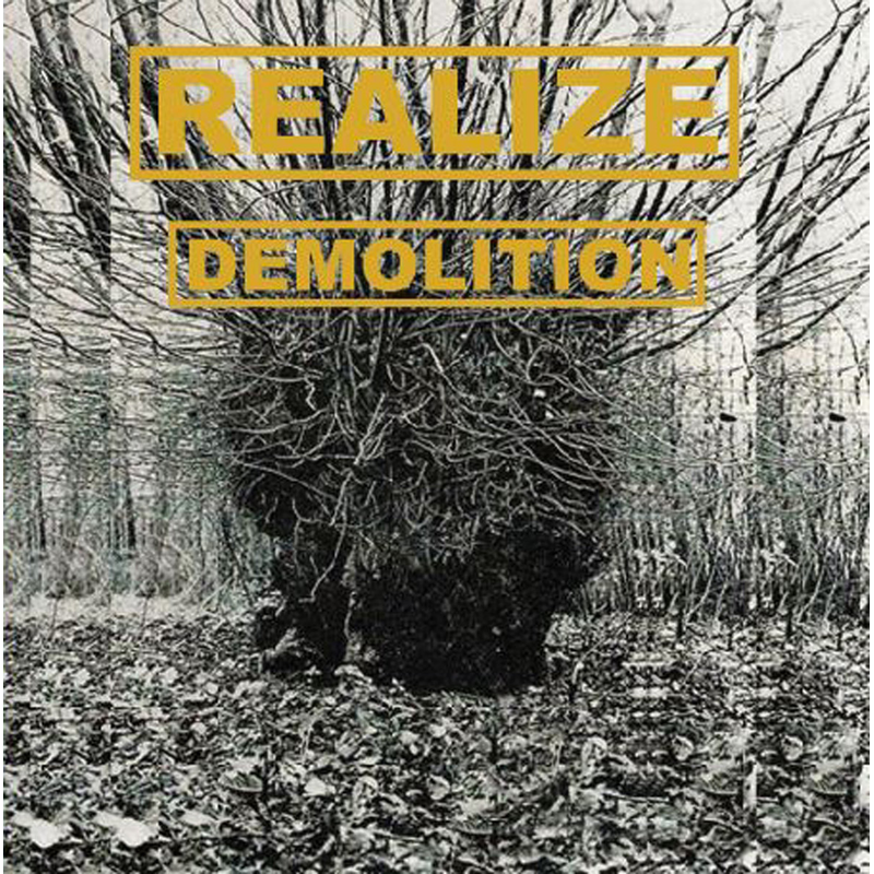 REALIZE - DEMOLITION LP