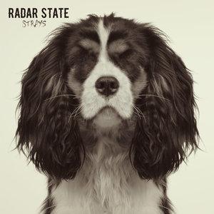 Radar State - Strays LP