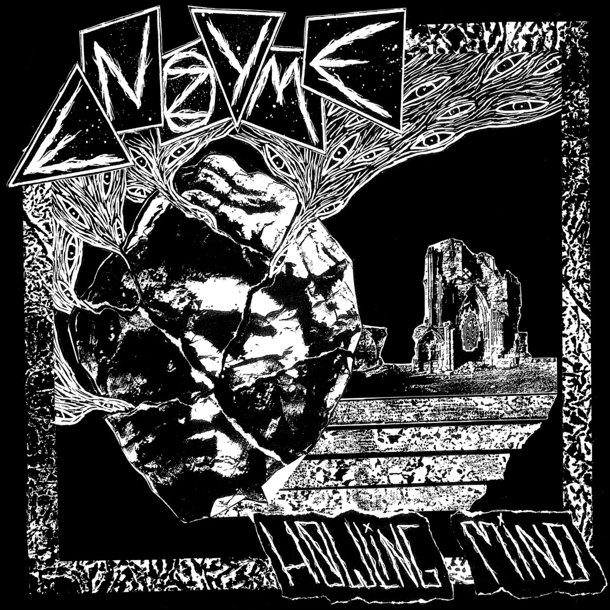 Enzyme - Howling Mind LP