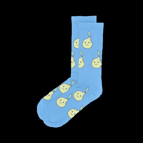 Lemon Socks