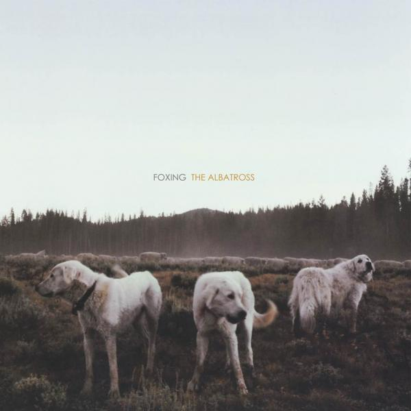 Foxing - The Albatross Limited Pressing Clear Vinyl