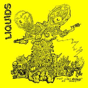 Liquids - Hot Liqs Revenge LP