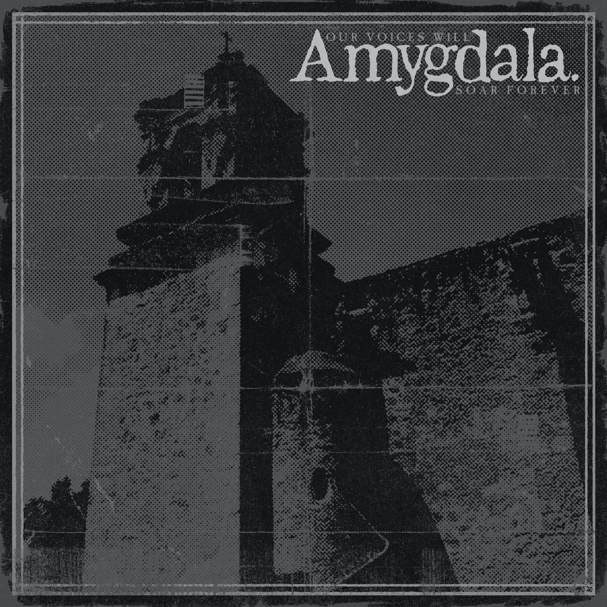 Amygdala - Our Voices Will Soar Forever LP