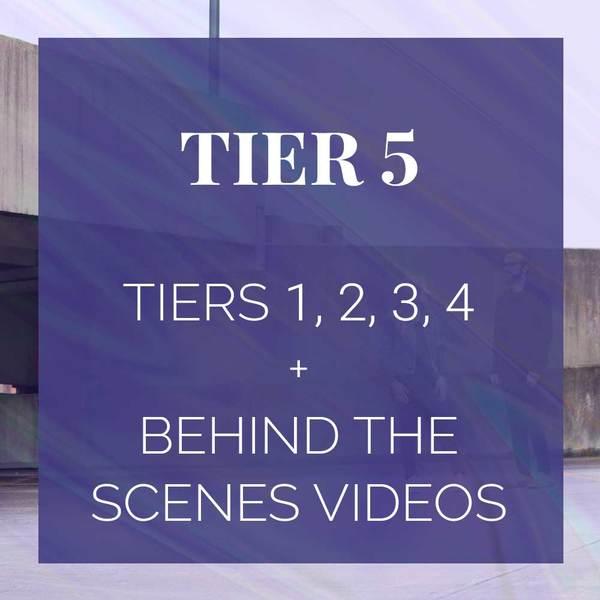 Tier 5 Partnership