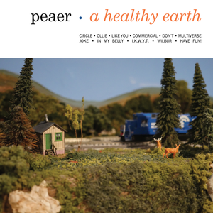 Peaer - A Healthy Earth