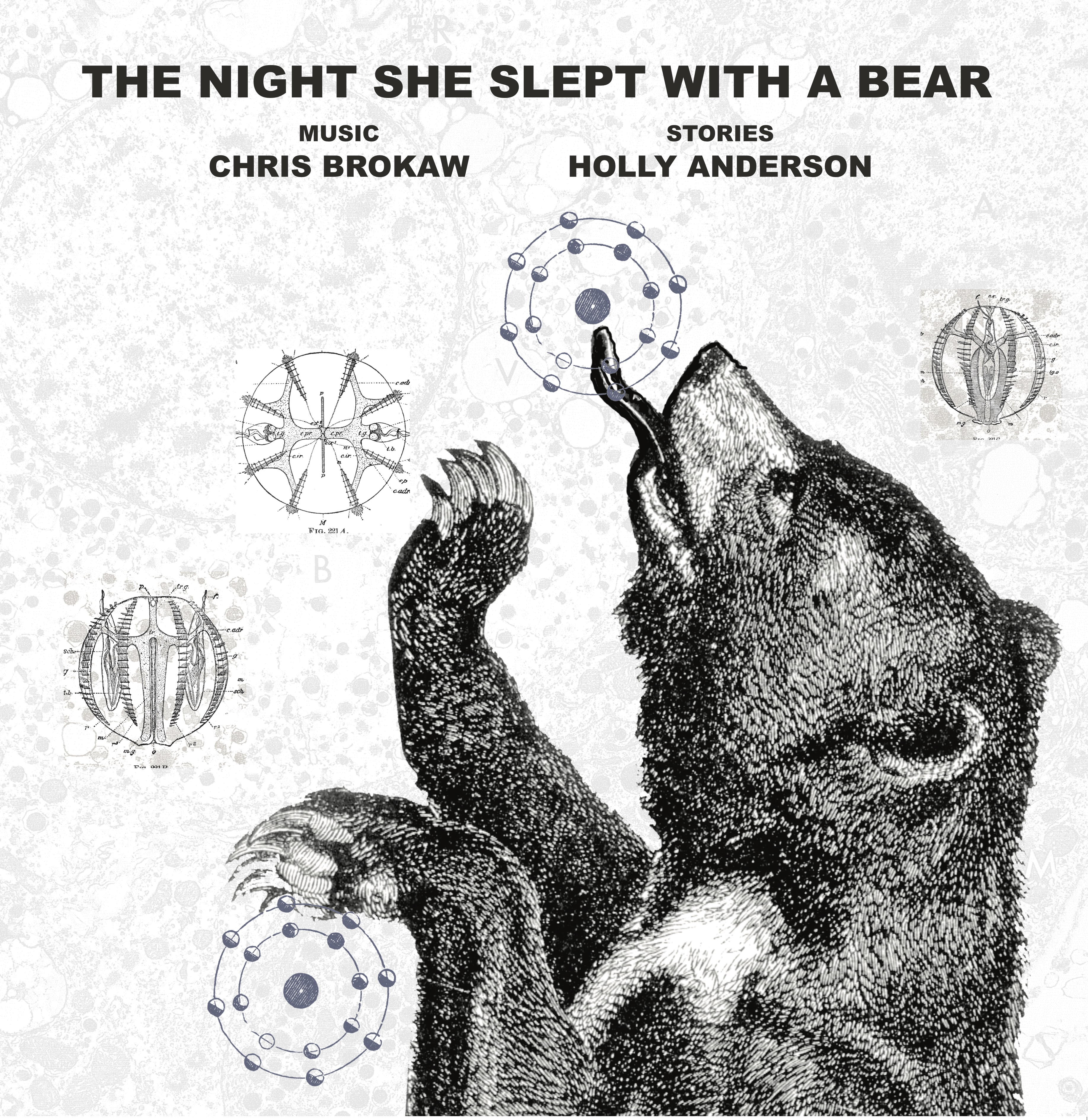 CHRIS BROKAW & HOLLY ANDERSON - THE NIGHT SHE SLEPT WITH A BEAR (LP/DD)