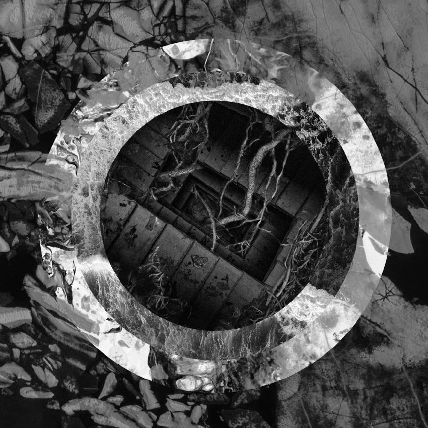 Torpor - Rhetoric Of The Image