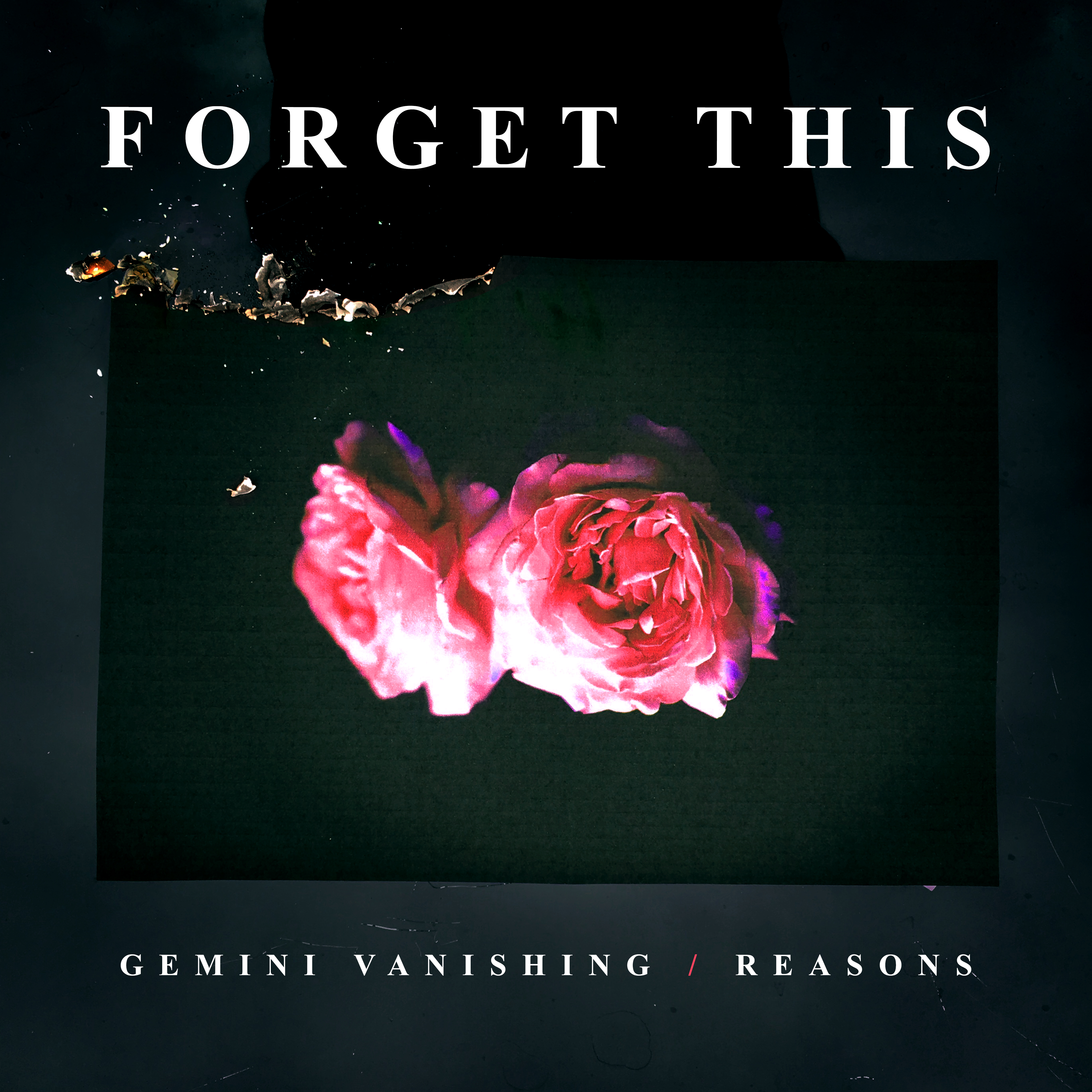 Gemini Vanishing / Reasons