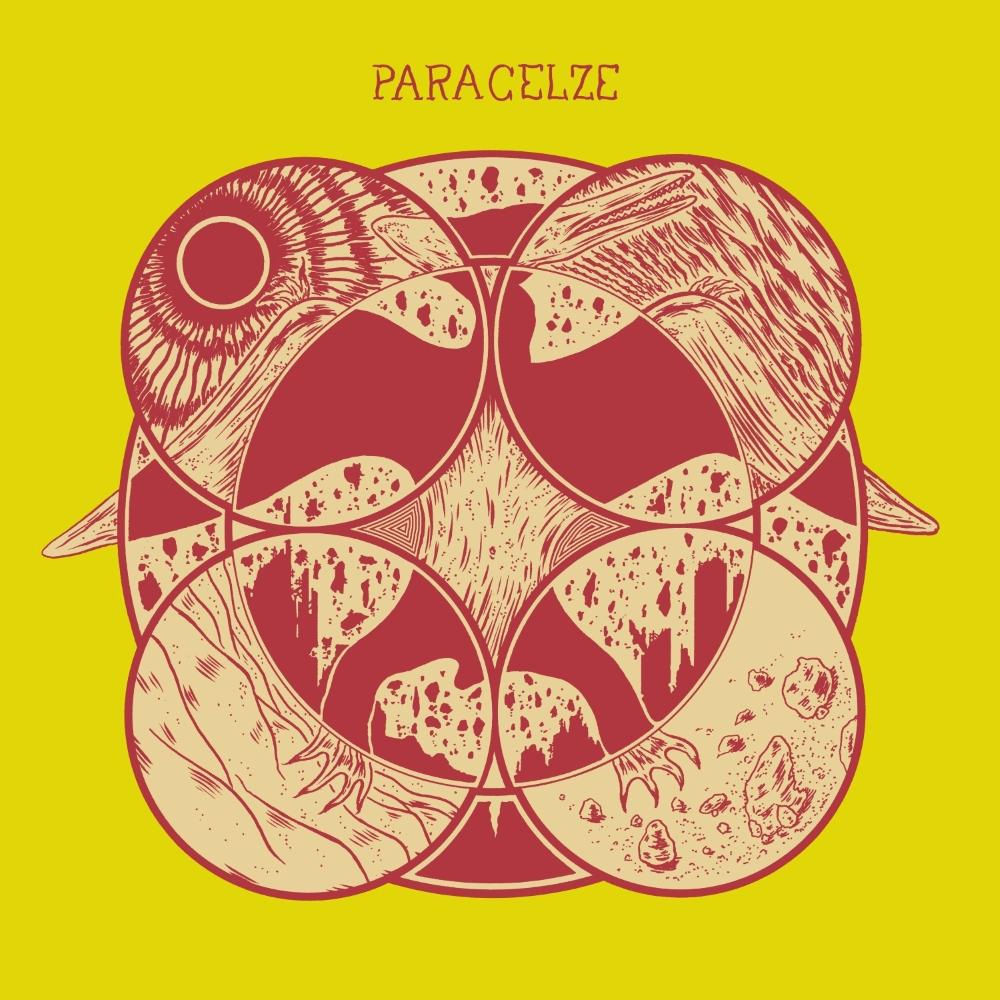 Paracelze - Ptérodactyle