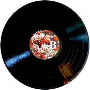 2019 vinyl repress bundle