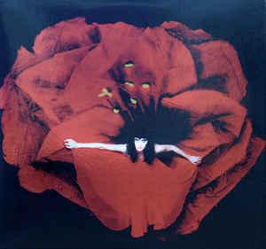 The Smashing Pumpkins - Adore 12