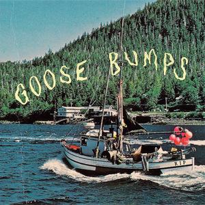 Boyscott - Goose Bumps