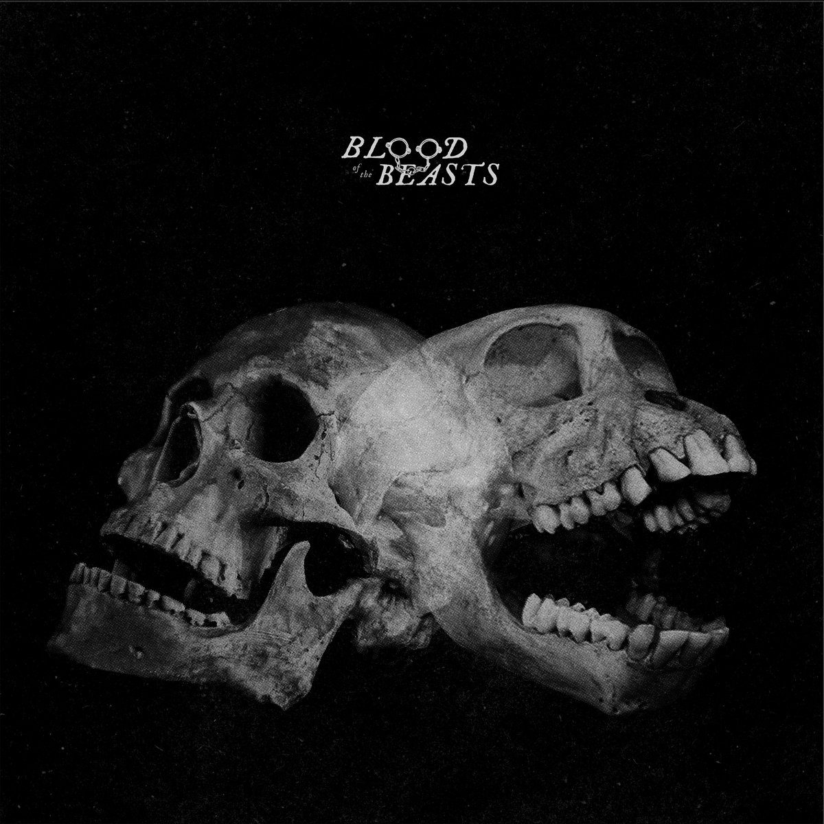 SECT - Blood of the Beasts LP