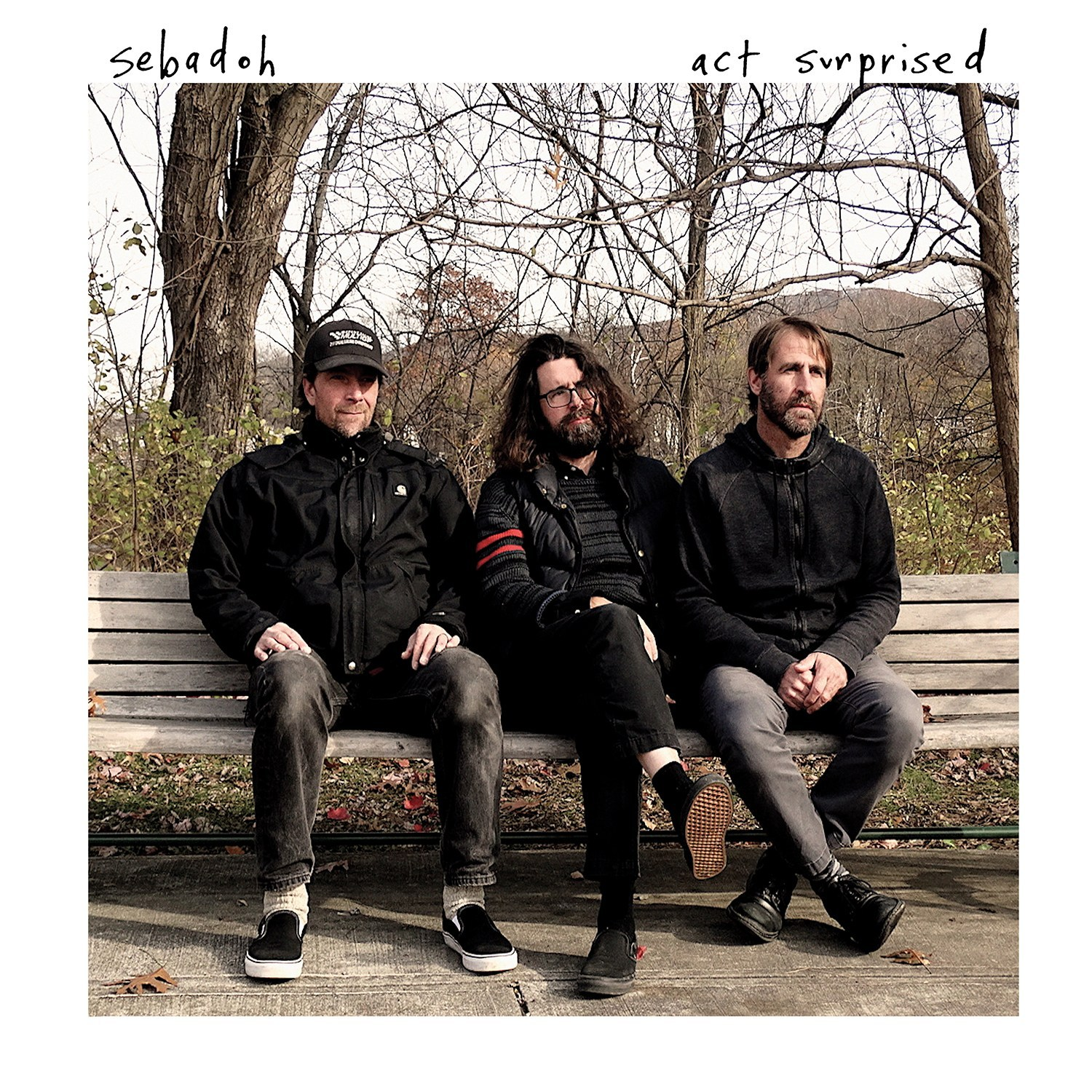 Sebadoh - Act Surprised - Digital