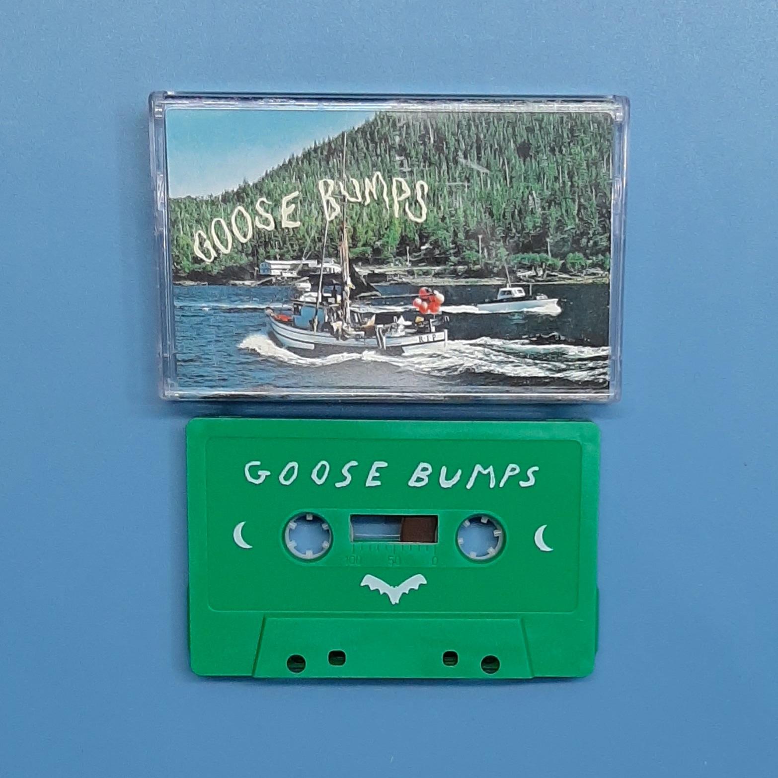 Boyscott - Goose Bumps (Citrus City Records)