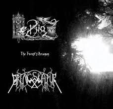 DRENGSKAPUR / HEILNOZ - The Forest's Arcanum