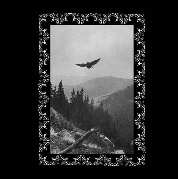 OSTOTS - Hil argi