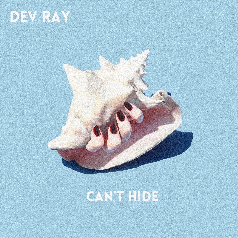 Dev Ray - Can't Hide - Single
