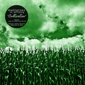 Meditations in Affinity: CULTIVATION