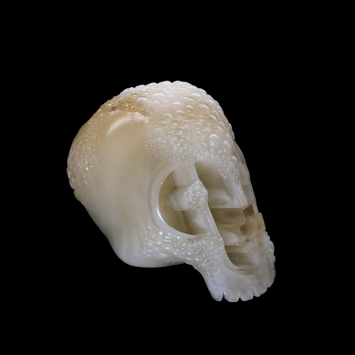 Dirty Ice Plague Skull