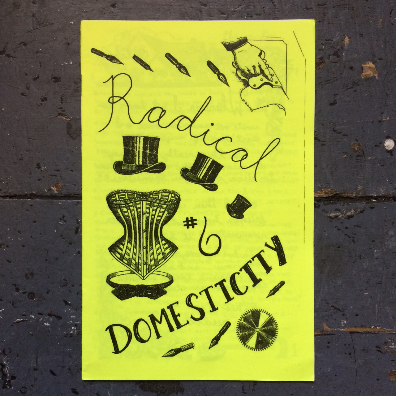 Radical Domesticity #6: Adulting & Past Issues