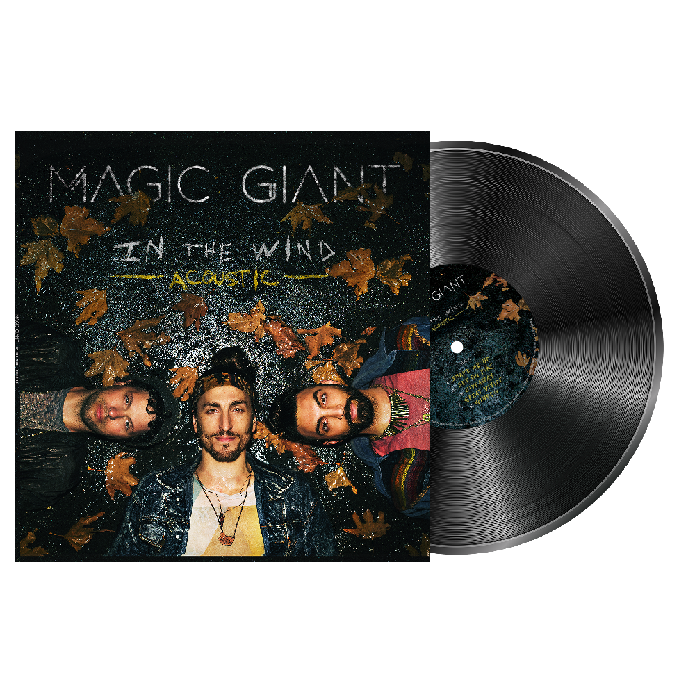 In The Wind (Acoustic) Vinyl