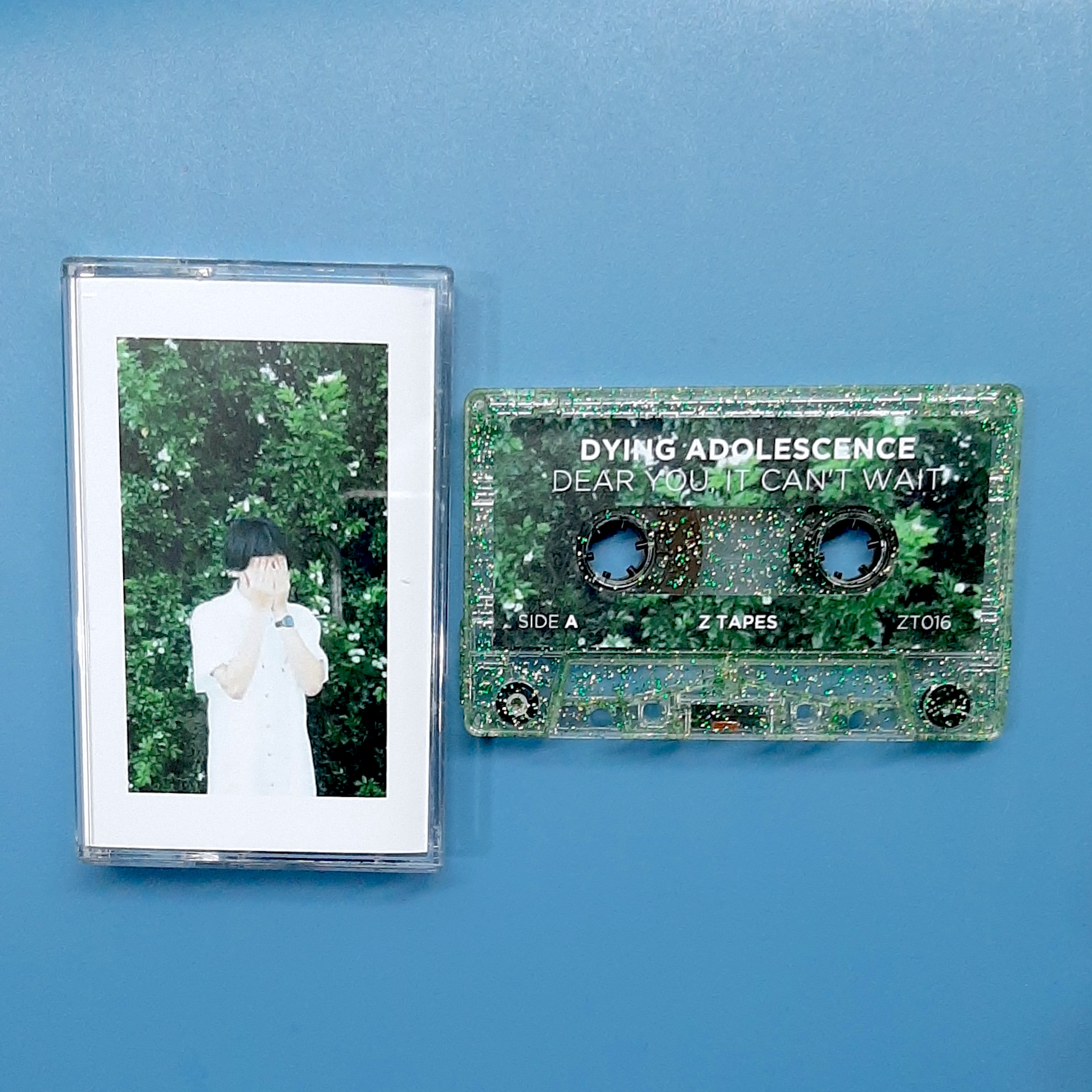 Dying Adolescence - Dear You, It can't wait. (Z Tapes)