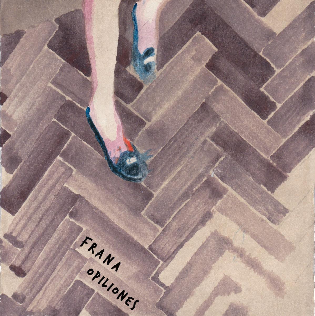 Frana / Opiliones - Split