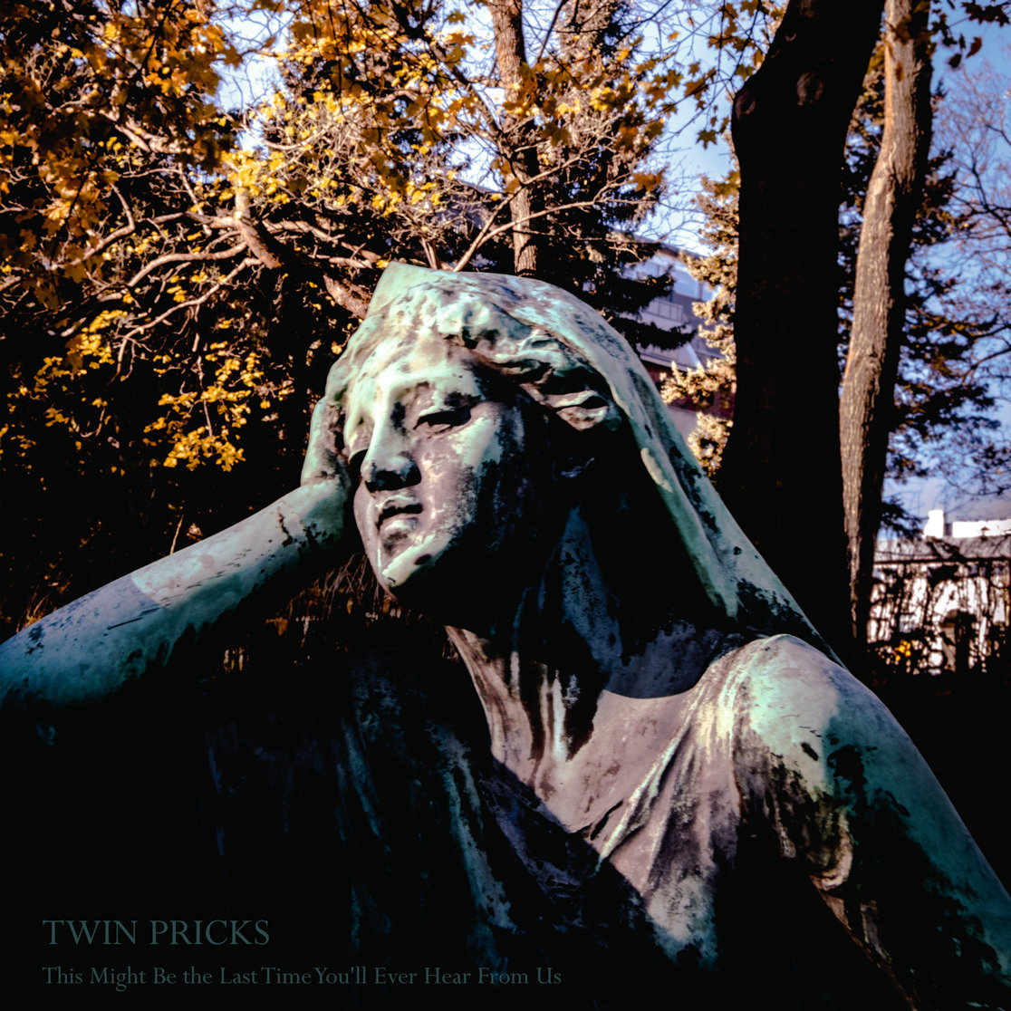 Twin Pricks - This Might Be The Last Time You'll Ever Hear From Us