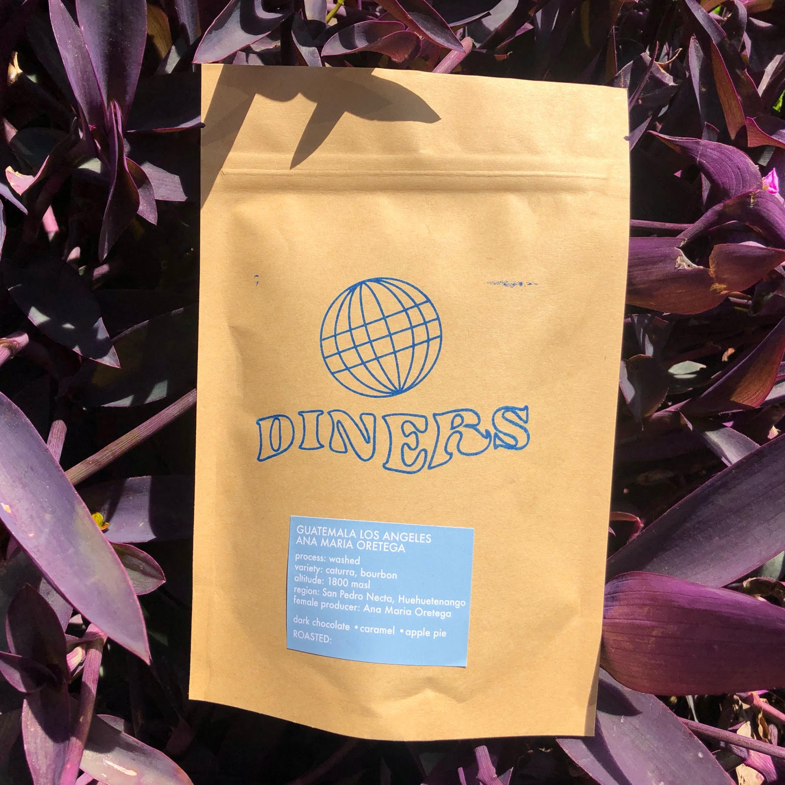 Diners - Leisure World Coffee Beans 4oz.