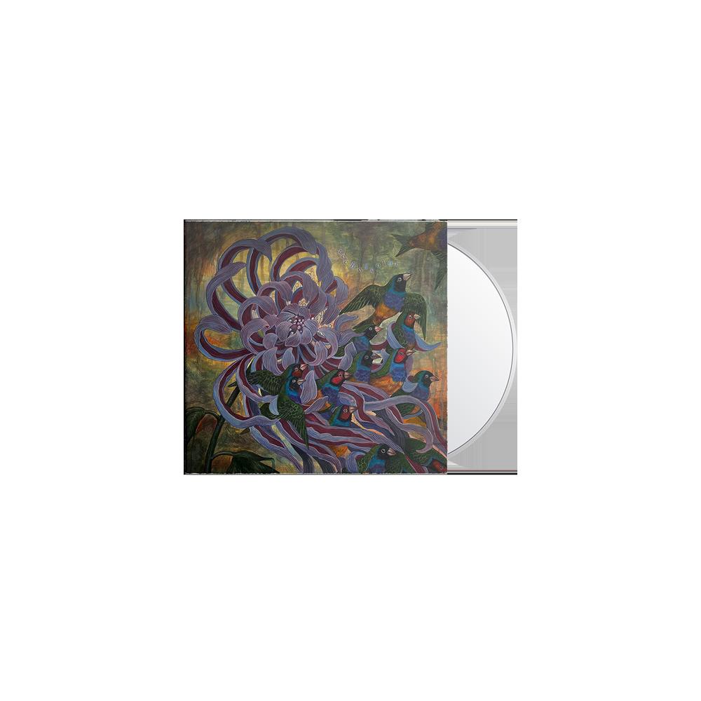 Technicolor CD + Tee