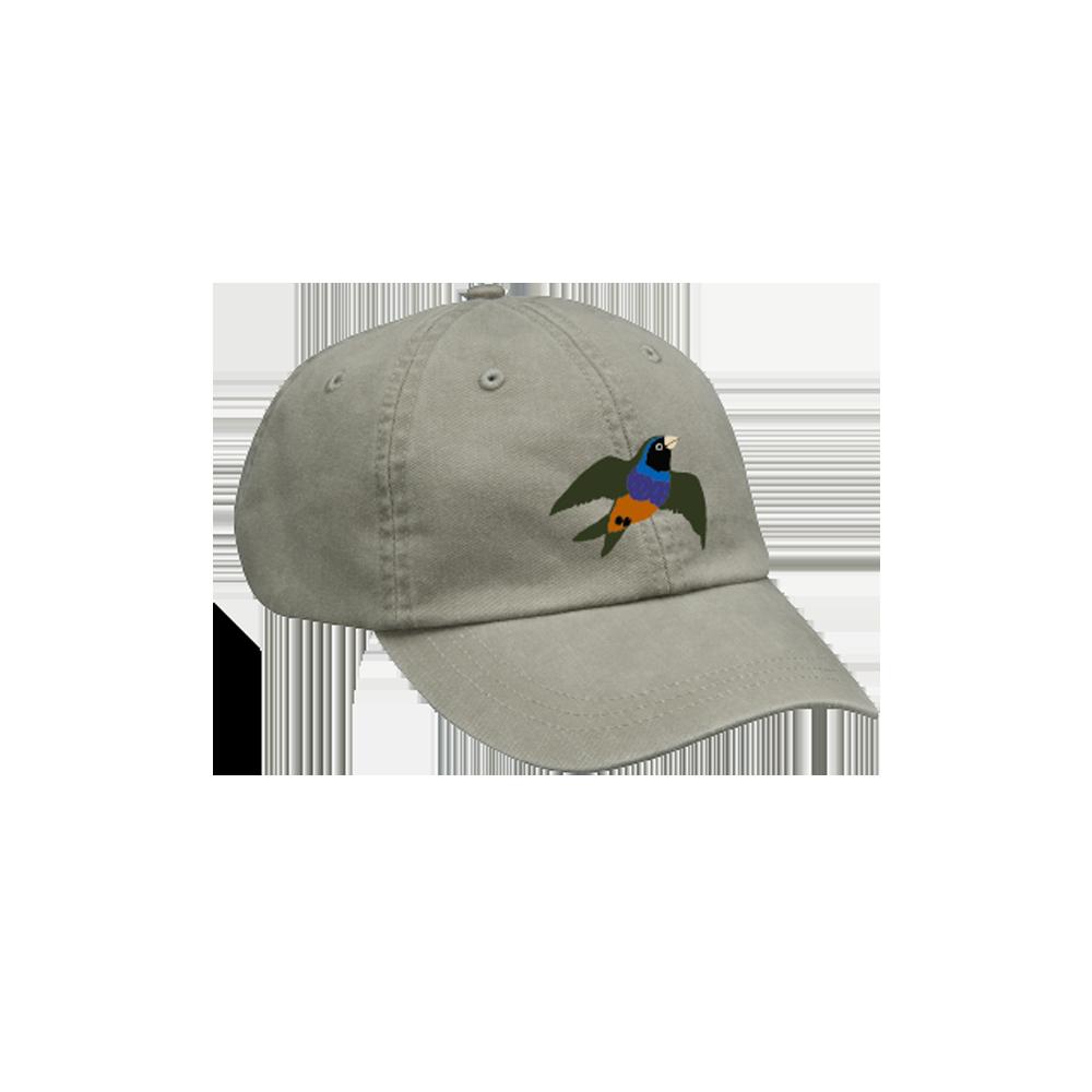 Technicolor CD + Hat