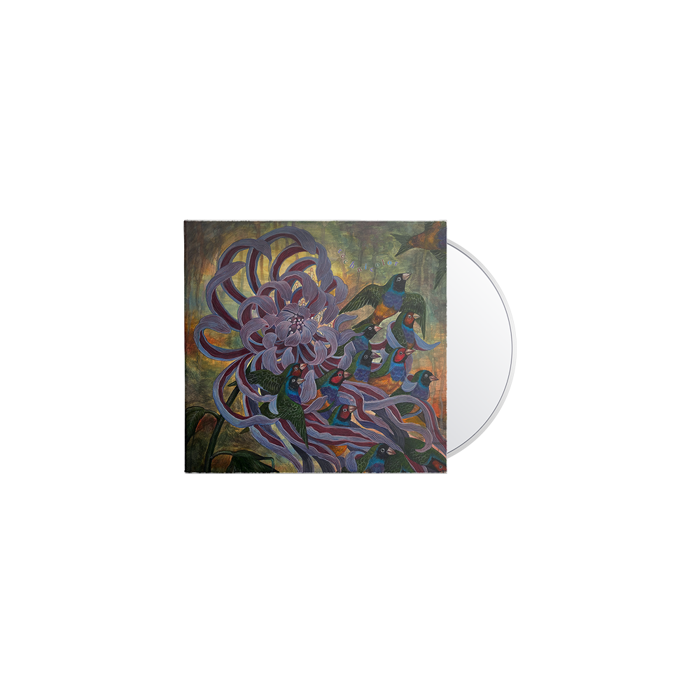 Technicolor CD + Tote