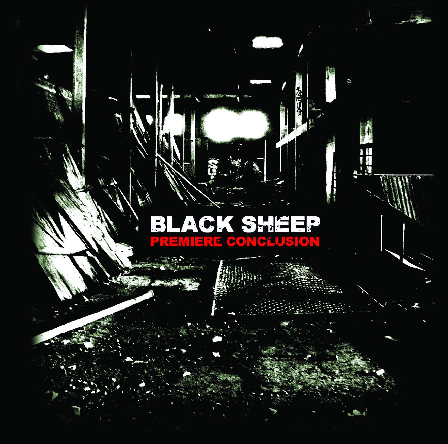 Black Sheep - première conclusion