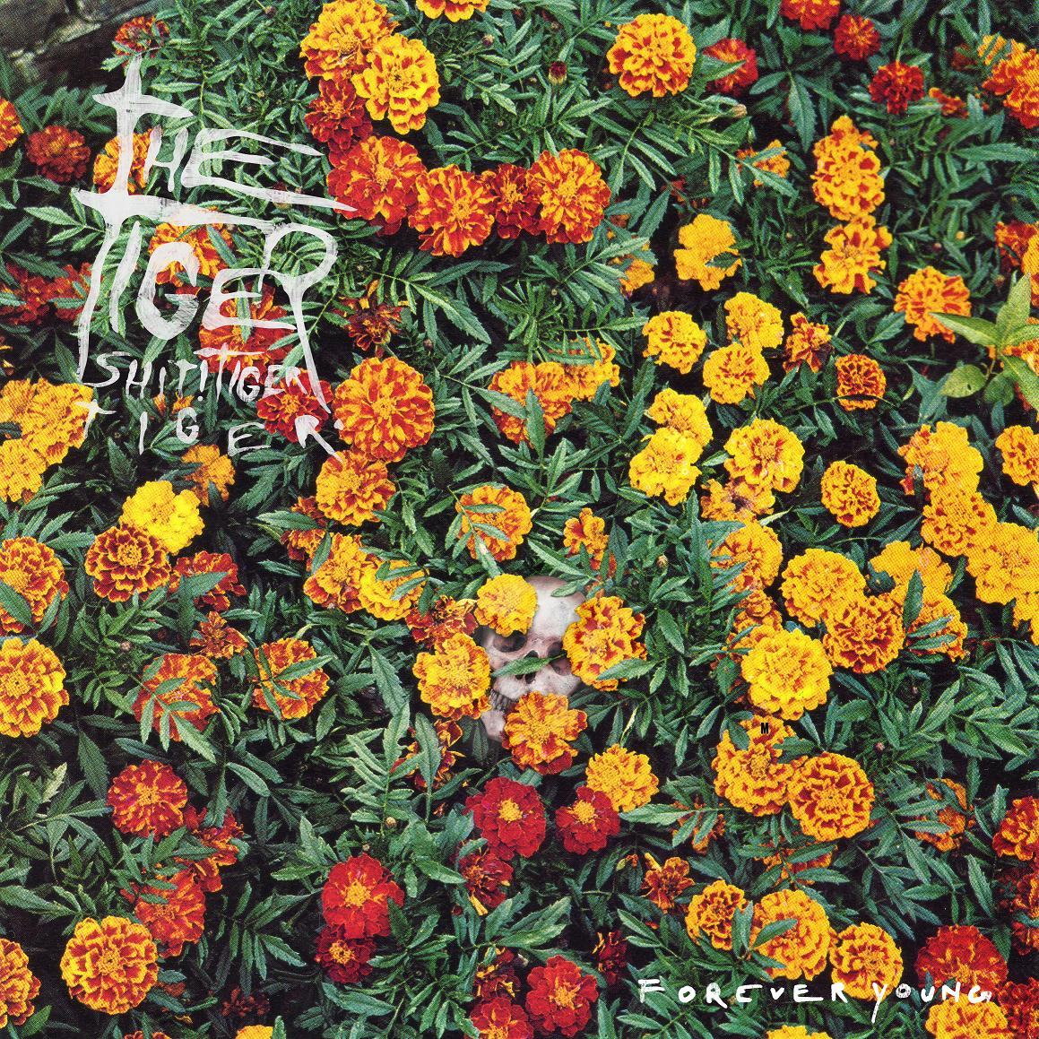 Tiger! Shit! Tiger! Tiger! - Forever Young CD/LP