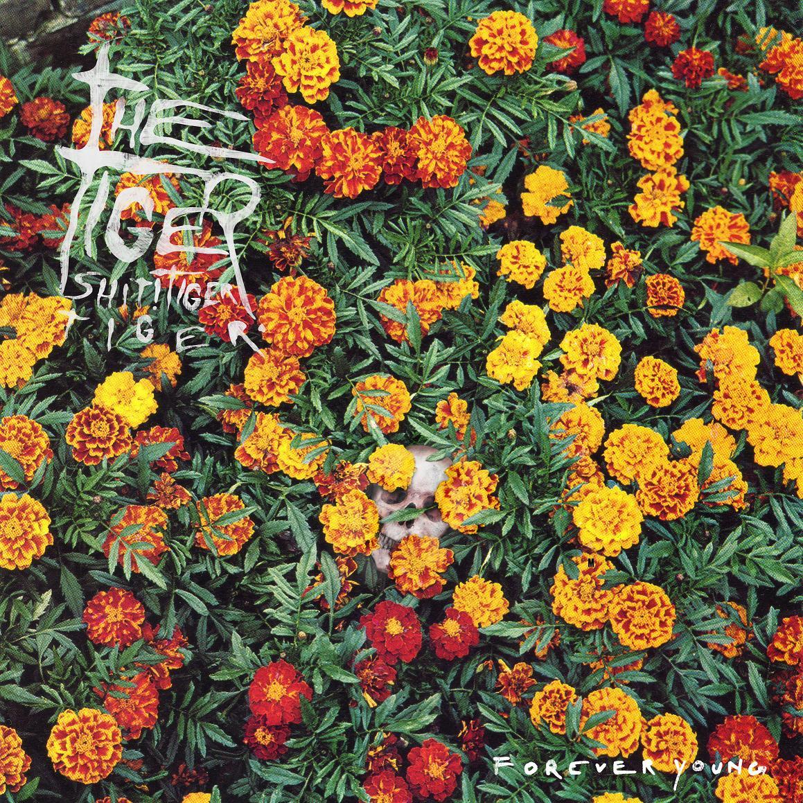 Tiger! Shit! Tiger! Tiger! - Forever Young CD/LP/MC