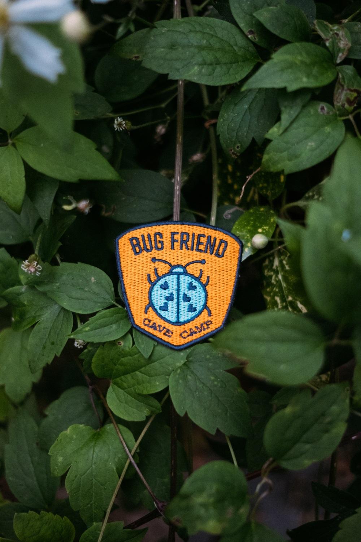 Bug Friend Patch