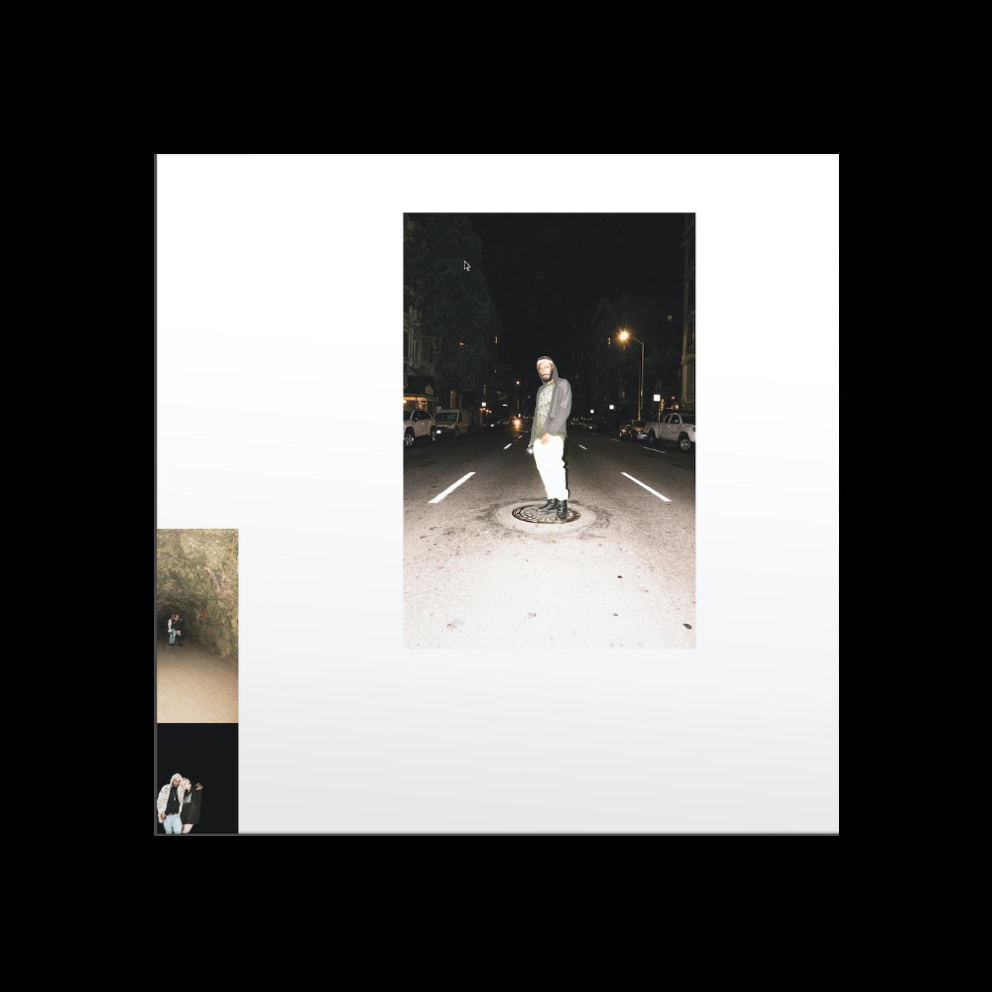 Living Single - Digital Download