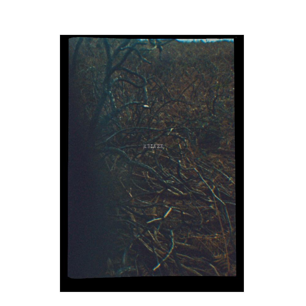 Zine 3 (Labyrinth Lyric Book)