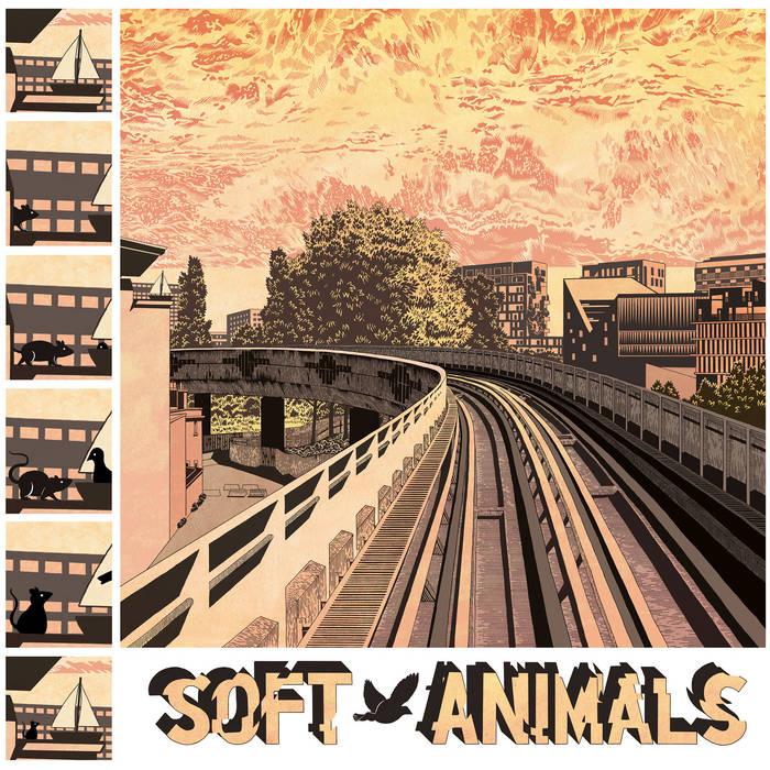 Soft Animals - st