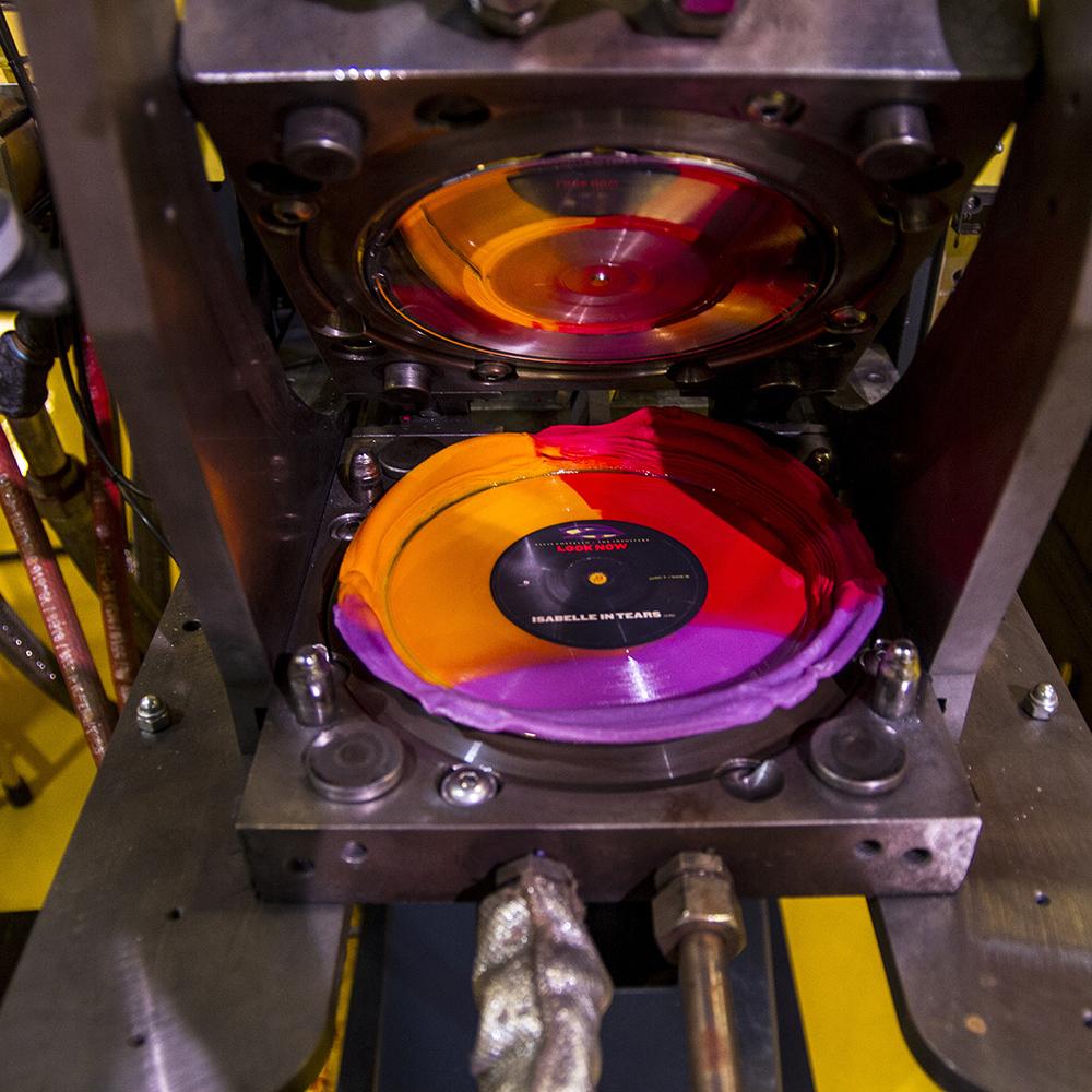 Vinyl Supreme Bundle