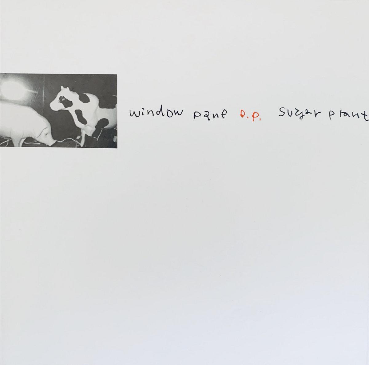 Sugar Plant – Window Pane 7