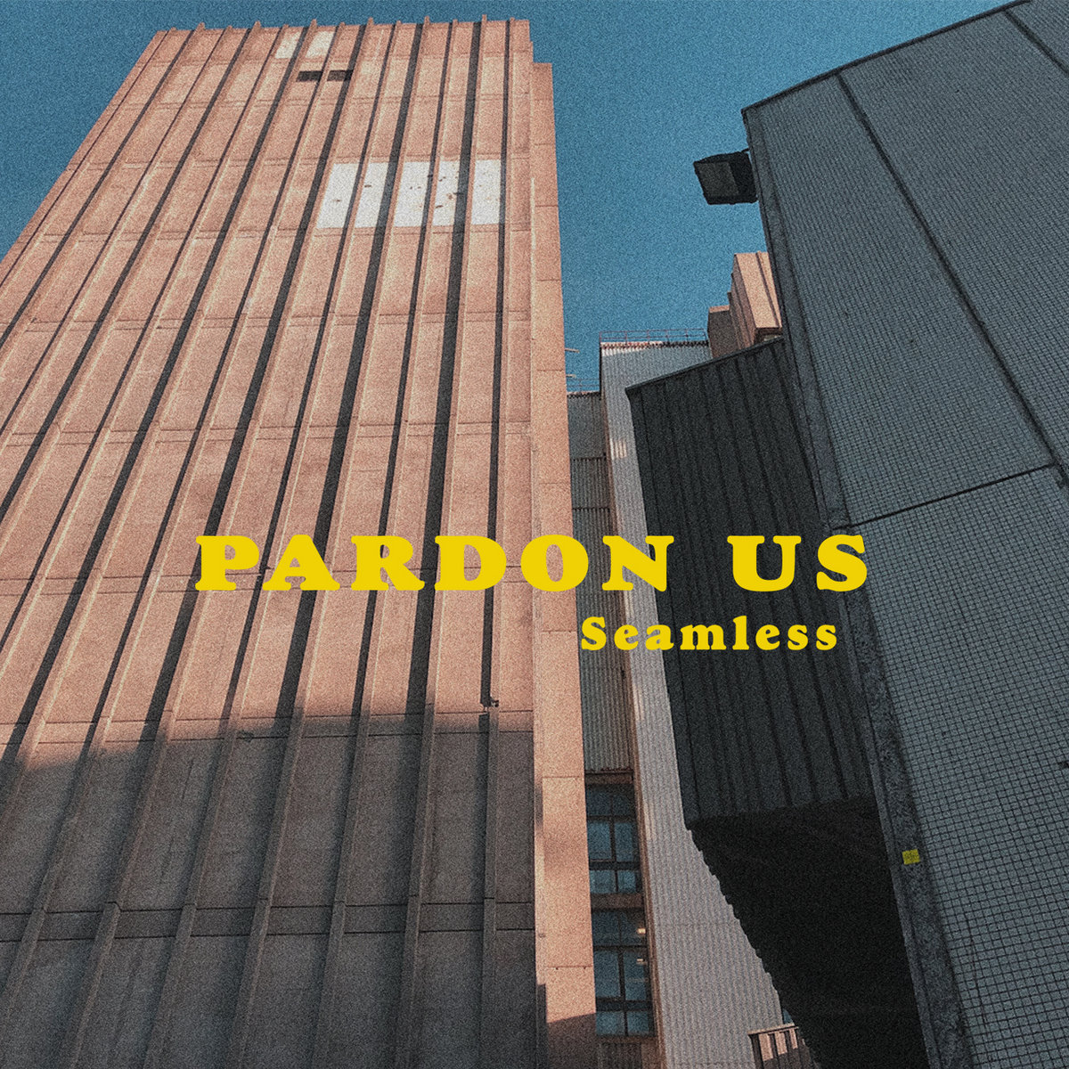 Pardon Us - Seamless LP