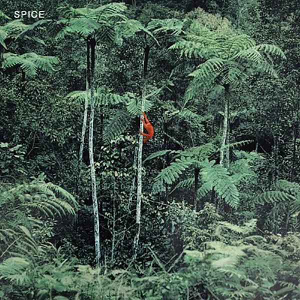 Spice - S/T LP